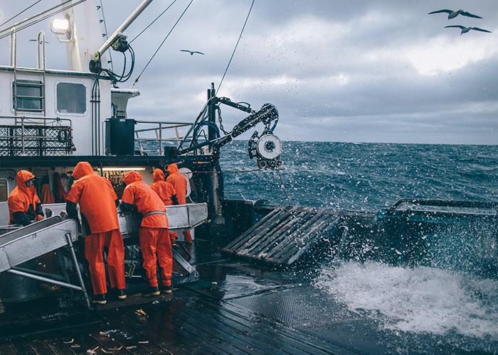 The crew sorts through a crab pot haul.